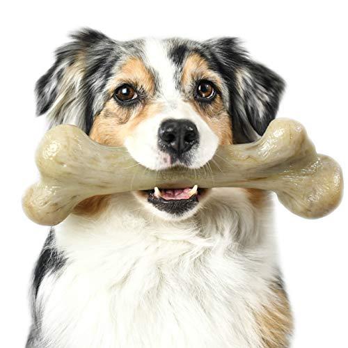 Best dog bones for aggressive chewers Pet Qwerks Dinosaur BarkBone