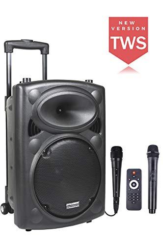 DYNASONIC - Dynapro 10 - Altavoz Inalámbrico Sistema Audio Profesional Megafonia Portátil | Lector USB Bluetooth Radio FM y Micrófonos, Color Negro (DYNAPRO 10)