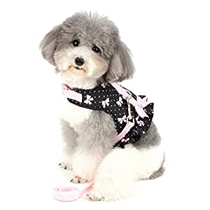 SMALLLEE_LUCKY_STORE Bow Flower Print Cat and Small Dog Harness Dress with Leash for Girls Adjustable No Pull Escape Proof Soft Walking Jacket Waterproof Puppies Kitten Harness Vest Outdoor