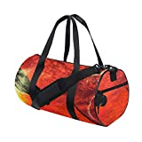 GEEVOSUN Fashion Print Gym Travel Duffle Bag UFO Spaceship Flying Towards Pyramid The Desert Latest Personalized Carry-on Luggage Bag with Strap
