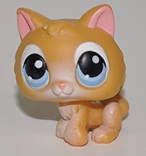 Kitten #47 (White, Blue Eyes, Brown Tips) - Littlest Pet Shop (Retired) Collector Toy - LPS Collectible Replacement Single Figure - Loose (OOP Out of Package & Print)