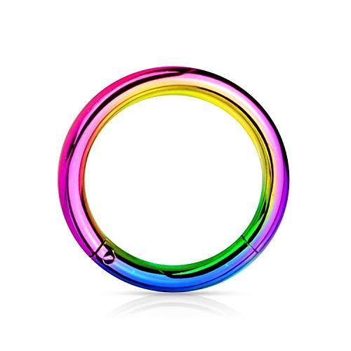 BodyJewelryOnline - Anillo de acero multicolor con bisagras para septo, labio, nariz, aro para cartílago, trago, 20 G, 18 G, 16 G, 14 G, 12 G, 10 G, todas las longitudes disponibles