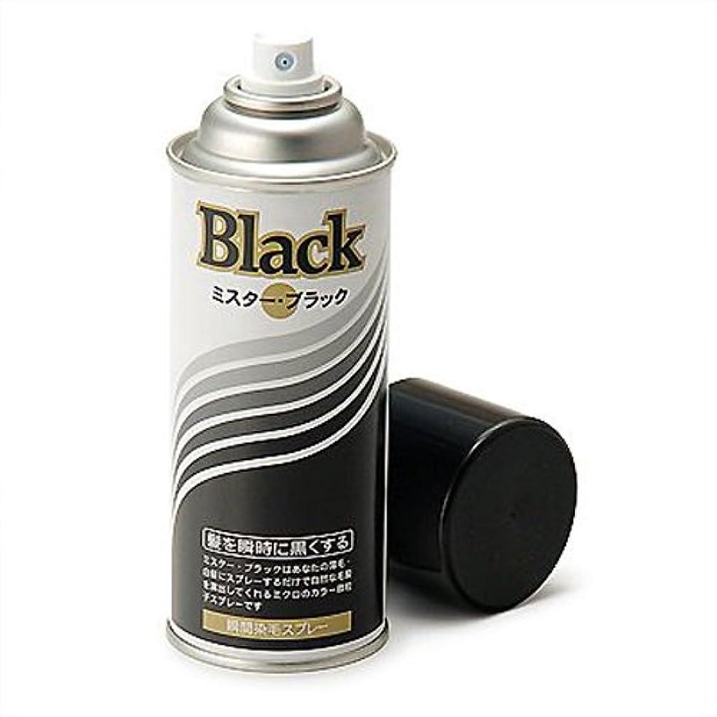 ブレーキその間スタイル増毛スプレー剤で薄毛を瞬時で増毛にするミスターブラック1本