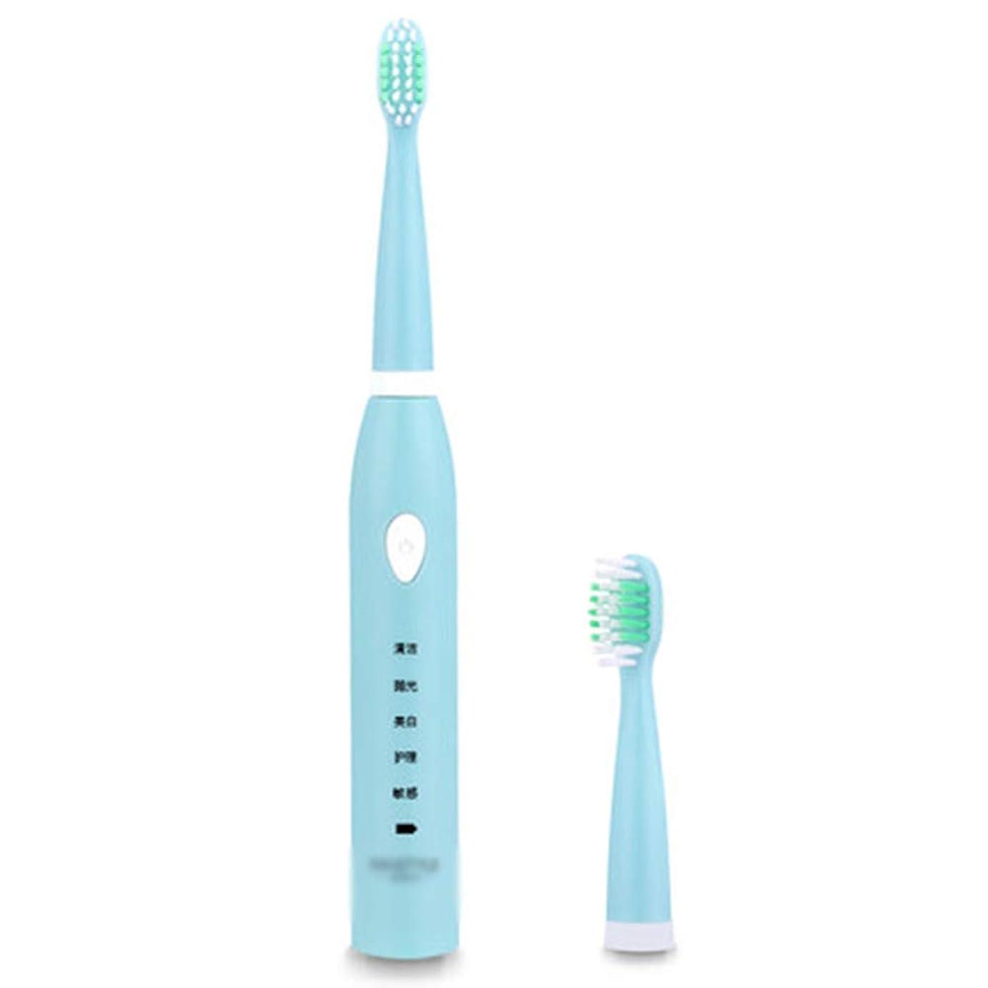 インストラクター休暇平らにする電動歯ブラシ、USB充電式歯ブラシ、交換用ヘッド1個、(5つのモード付き自動タイマー、IPX7防水),B
