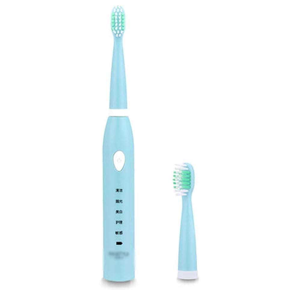 過ちトラフィック脚本電動歯ブラシ、USB充電式歯ブラシ、交換用ヘッド1個、(5つのモード付き自動タイマー、IPX7防水),B