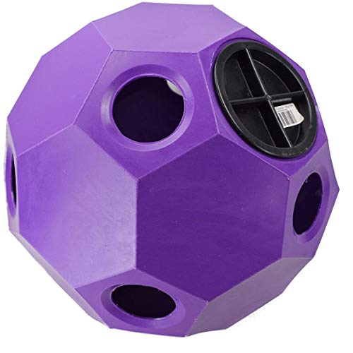 Horse | Parallax Plastic Hay Play (One Size) (Purple), Gym exercise ab workouts - shap2.com