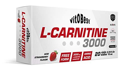 L-CARNITINE 3000-20 Viales 10 ml FRESA ACIDA - Suplementos Alimentación y Suplementos Deportivos - Vitobest