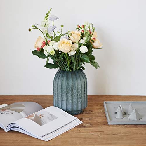 Hyindoor Florero de Vidrio Coloreado para Flores Plantas Minilista Jarrón Moderno de Vidrio Esmerilado para Decorar Escritorio Estante en Oficina Hogar (16x22cm)