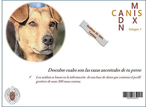 Canis-Adn-Mix Test ADN Perros