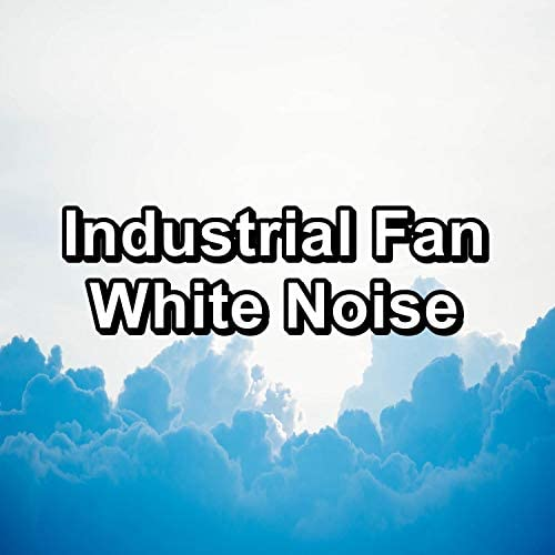 Pink Noise, White Noise & White Noise Research