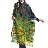 Bufanda de mantón Mujer Chales para, Bufanda de invierno unisex con sensación de cachemira clásica, Maletsunyane Falls Lesotho África Bufandas largas y cálidas más hermosas, estola de chal
