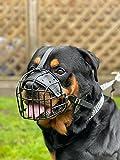 Campeón nuevo metal fuerte cesta perro bozal Rottweiler, Mastín Golden Retriever etc (R1, negro)