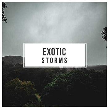 # 1 A 2019 Album: Exotic Storms