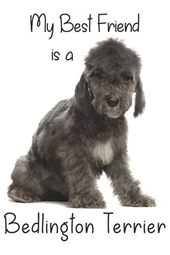 """My best Friend is a Bedlington Terrier (Squared Paper): 6"""" x 9"""" Blank Quadrille (quad) ruled Journal Notebook 120 pages of 5mm grid squared graph paper (Best Friends)"""