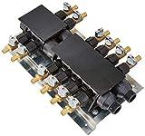 SharkBite RM22712 12Port Barb Manifold with Brass Ball Valves