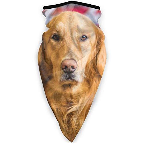 July Winddicht gezichtsmasker met Selection-focus voor fotografie van Golden Labrador Retriever
