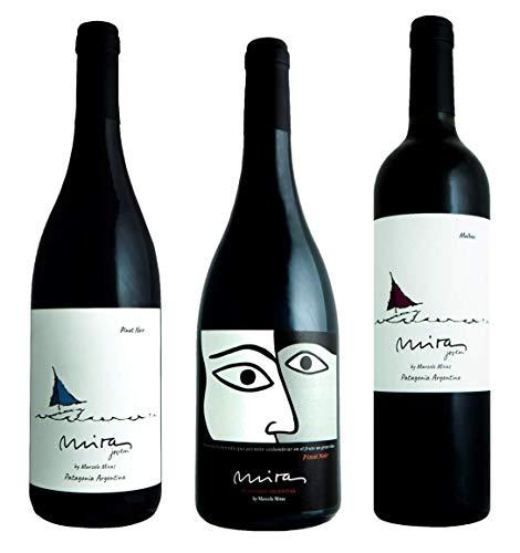Atlantik Weine, Südamerika Weinpaket Patagonien mit Rotweinen aus Argentinien, Malbec und Pinot Noir aus Nord Patagonien (3 x 0,75l)