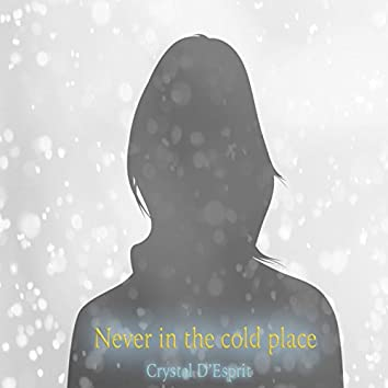 Never in the Cold Place
