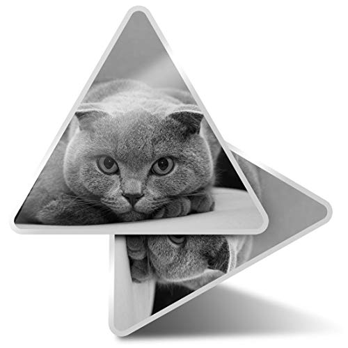2 pegatinas triangulares de 7,5 cm – BW – gris escocesa Fold Cat Fun Calcomanías para ordenadores portátiles, tabletas, equipajes, reservas de chatarra, neveras #35433