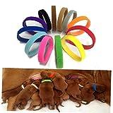 Neugeborene Tiere identifizieren Halsbänder Verstellbare Nylon Kleine Haustier-Welpen-Hundehalsbänder Kätzchen Halskette Whelping Welpen Bänder 12 PC/Set