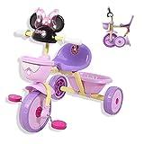 NUBAO Triciclo Triciclo, Carrito Conveniente Bebé en Bicicleta Triciclo Plegable Llevar para niños Disney Toy Tricycle Balance de Plegado Coche 610x720x470mm (Color: Púrpura)