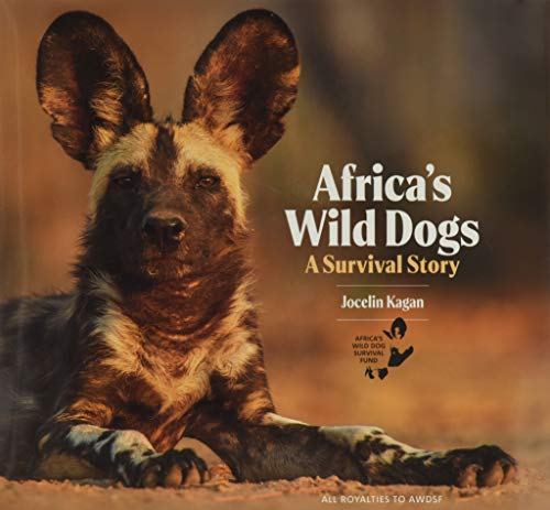 Africa's Wild Dogs: A Survival Story
