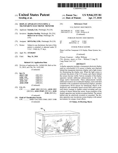 Display apparatus including a transparent electronic monitor: United States Patent 9946335 (English Edition)