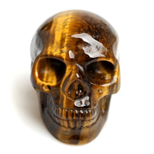 XKACrystal 2' Healing Crystal Stone Human Reiki Skull Figurine Statue Sculptures Tiger-Eyes Quartz Skull