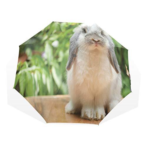LASINSU Regenschirm,Foto eines holländischen Lop Kaninchens, das auf den grünen Pflanzen eines hölzernen Brettes am Hintergrund Steht,Faltbar Kompakt Sonnenschirm UV Schutz Winddicht Regenschirm