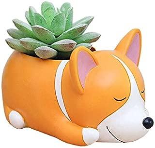 Best pot plant cartoon Reviews