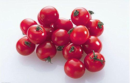 Graines de fruits et de légumes NEUF Magenta Pearl Tomate Graines Infinite Croissance Forme Peut être en pot 1 G/sac d'environ 100 grains