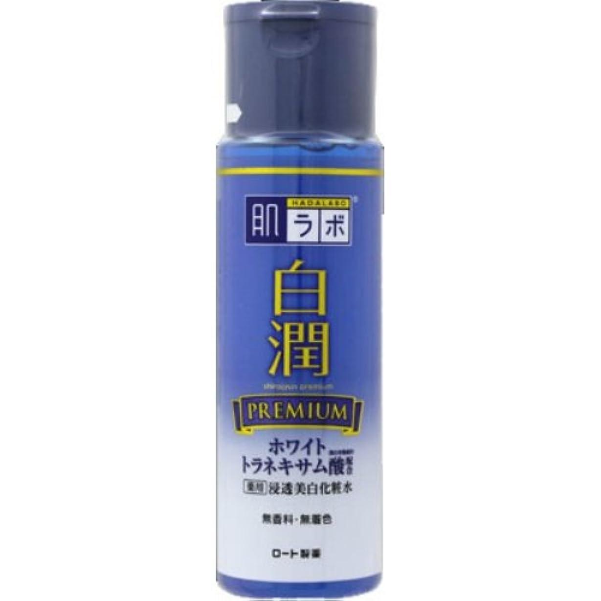 虫を数える町活性化する肌ラボ 白潤プレミアム 薬用浸透美白化粧水 170mL × 48個セット