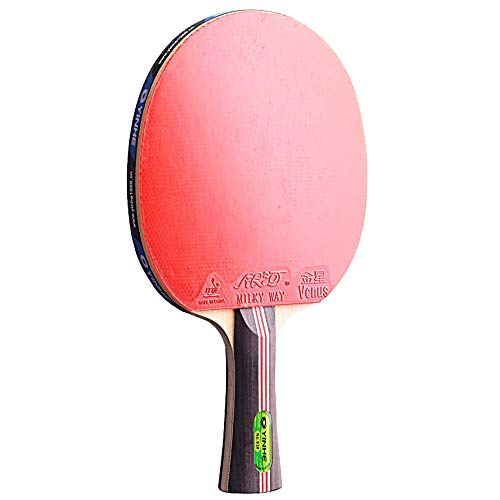 Lerten Palas de Ping Pong,Raquetas de Tenis de Mesa 3 Estrellas Profesional con Excelente Control Y Giro para Actividades Familiares Club Deportivo/A/mango largo