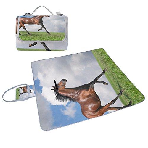 coosun Pferde Gras Wolken Tiere Picknick Decke Tote Handlich Matte Mehltau resistent und wasserfest Camping Matte für Picknicks, Strände, Wandern, Reisen, Rving und Ausflüge