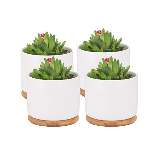 Succulent Pots, 4 Inch Succulent Planter Fits Larger Variety of Plants | Ceramic Flower Planter Pot with Bamboo Tray