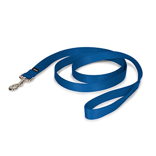 "PetSafe Nylon Leash, 1"" x 6', Royal Blue"