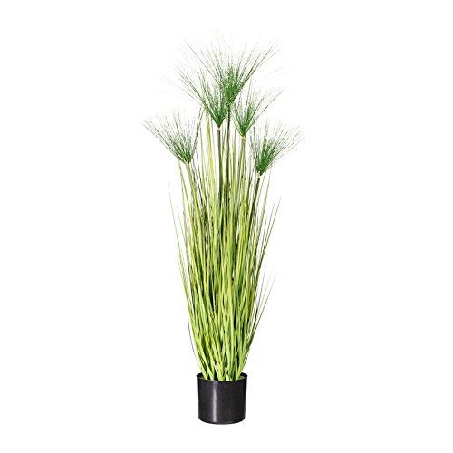 Pflanzen Kölle Kunstpflanze Miscanthus Cyperus grün, im Kunststofftopf, ca. 125 cm