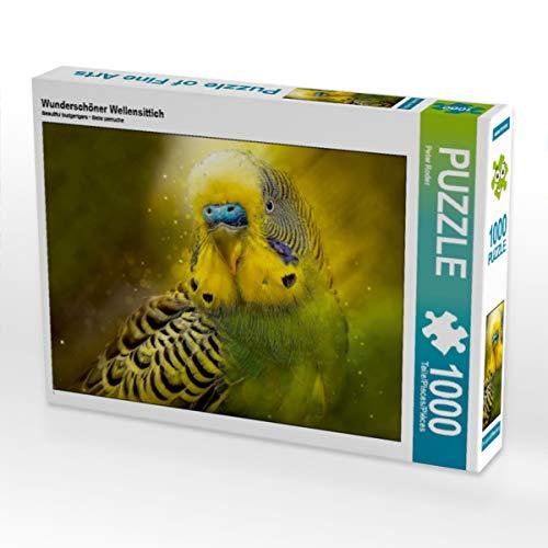 CALVENDO Puzzle Wunderschöner Wellensittich 1000 Teile Lege-Größe 64 x 48 cm Foto-Puzzle Bild von Peter Roder