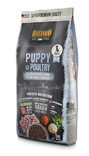 Belcando Puppy GF Poultry [1 kg] getreidefreies Welpenfutter   Welpenfutter ohne Getreide   Alleinfuttermittel für Welpen bis 4 Monate