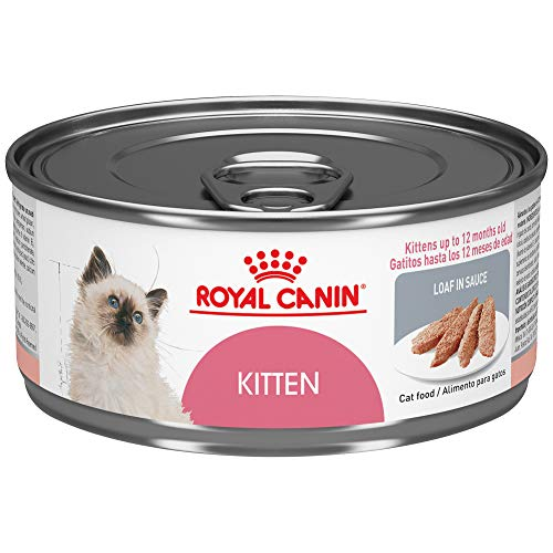 Royal Canin Feline Health Nutrition Kitten Loaf in Sauce Canned Cat Food, 5.8 Ounce Can (Pack of 24)