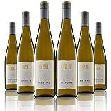 6 Flaschen Johann Geil | Weißwein Riesling trocken | Gutswein | 2018 | Deutscher Wein | Qualitätswein | Oekonomierat Johann Geil Erben | Reihnhessen | Nr. 1814