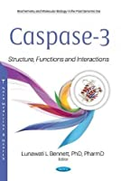 Caspase-3: Structure, Functions and Interactions