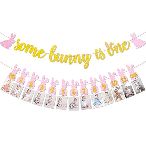 Some Bunny Is One Photo Banners kit, Pink & Gold 12 Months First Birthday Garland For Baby Girls Spring Easter Themed Party Decorations