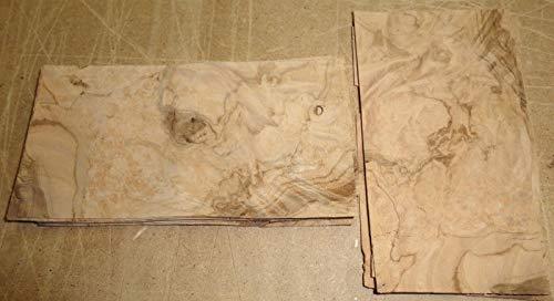 Olive Ash Burl wood veneer 2