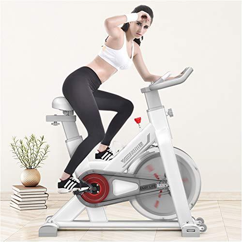 TXDWYF Bicicleta Estática/Bicicletas Estáticas y de Spinning para Fitness/Bicicleta Fitness de Gimnasio Ejercicio/Unisex Adult/Ajustable Resistencia/Volante de Inercia