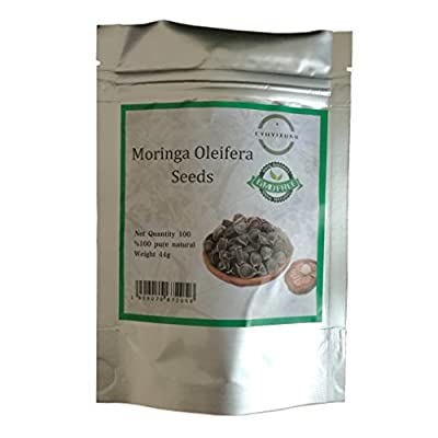CYH YI Xuan - 100 Seeds Moringa Moringa oleifera Drumstick Tree%100 Fresh Pure Natural
