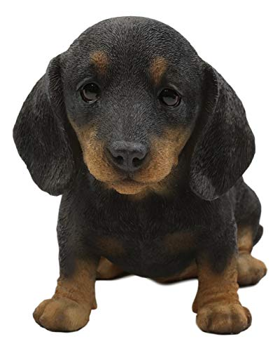 Ebros Realistic Adorable Black and Tan Dachshund Puppy Dog Statue 8' Long Schnitzel Sausage Wiener Dog Figurine Pet Pal Gallery Quality Sculpture with Glass Eyes