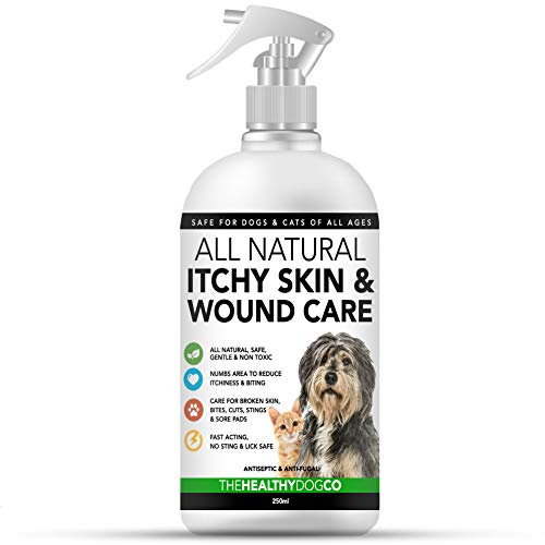 The Healthy Dog Co Natürliches Anti-Juck & Wund Pflegespray für Hunde & Katzen | Anti-Juckreiz & Hautpflege für Haustiere | Hilft schnell bei der Behandlung von Juckreiz, gerissener Haut und Wunden