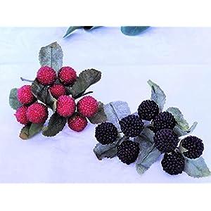 Brombeeren Himbeeren Zweige Früchte Herbst Sommer Tischdekoration Tischschmuck