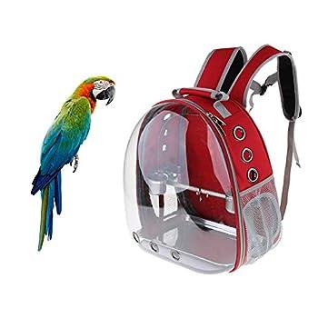 Kuizhiren1 Sac de transport pour perroquet pour animal domestique Transparent Cage pour perroquet Étanche, Rouge